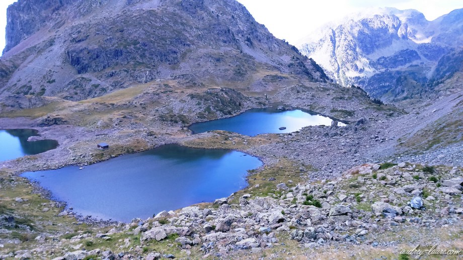 lac robert