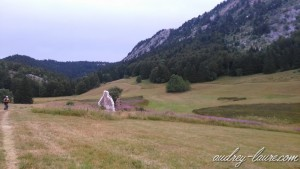 plaine d'herbouilly