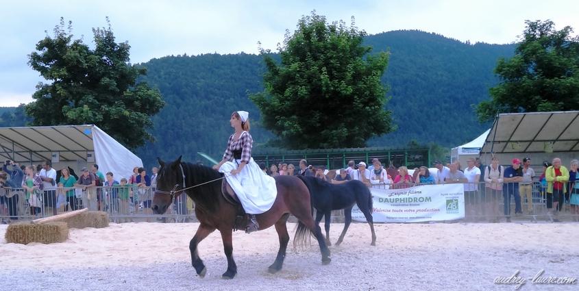 fête du bleu chevaux