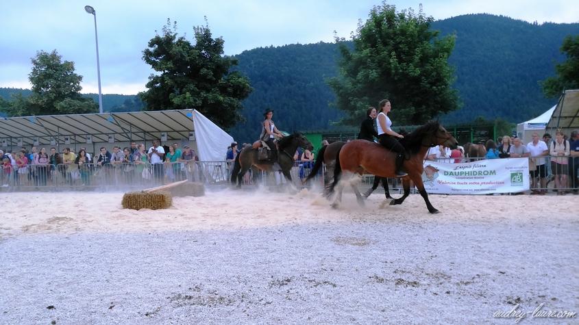 fête du bleu chevaux vercors