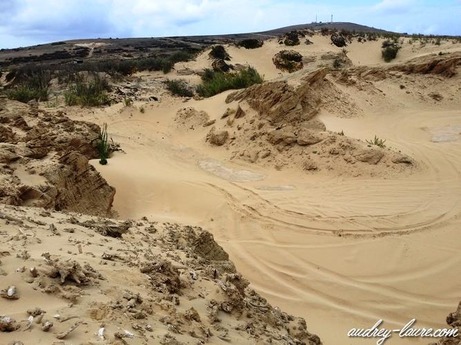porto santo dunes de sable madère