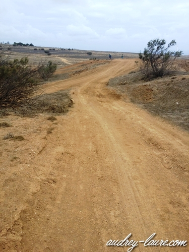 chemin désertique