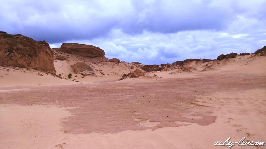 paysage dunes de sable