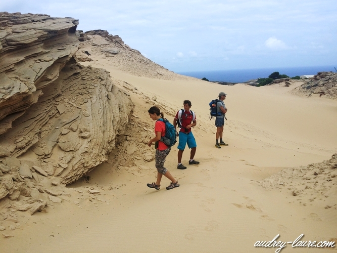 porto santo madère dunes fonte da areia