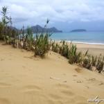 Porto Santo et sa longue plage de sable fin (Madère)