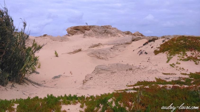 fonte da areia porto santo madère