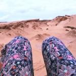 Madère : dans les dunes de l'île de Porto Santo…