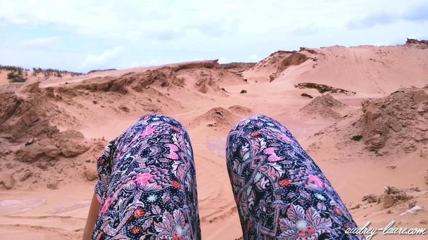 porto santo dunes de sable