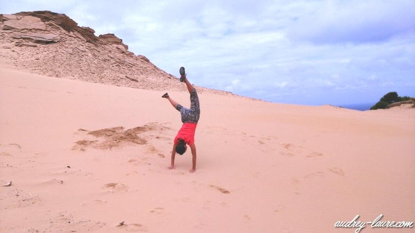 arbre droit dans le sable