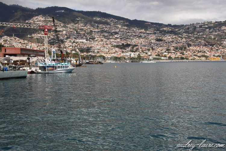 port funchal madère
