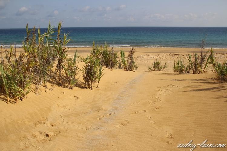 sable doré porto santo
