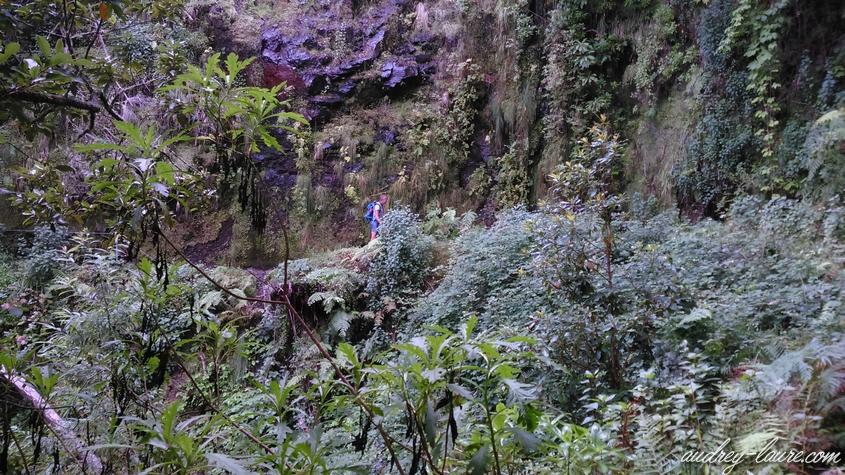 levada caldeirao verde randonnée cascade