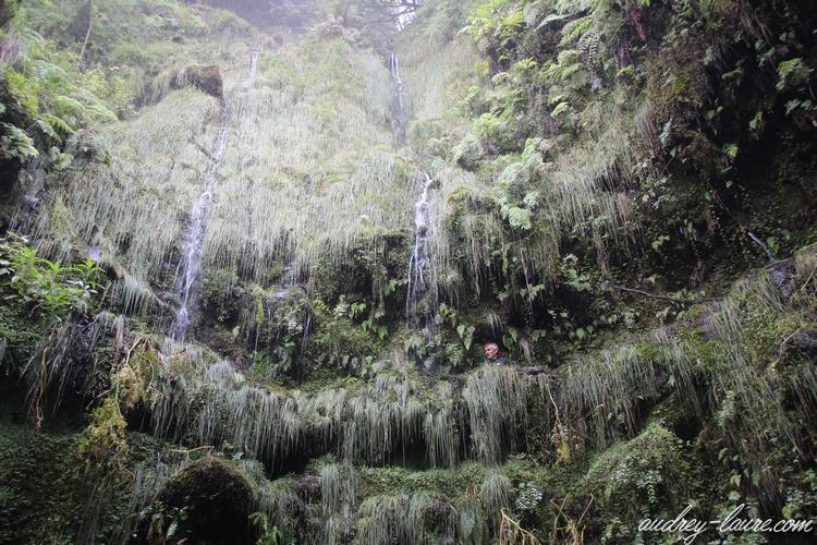 caldeirao verde cascades