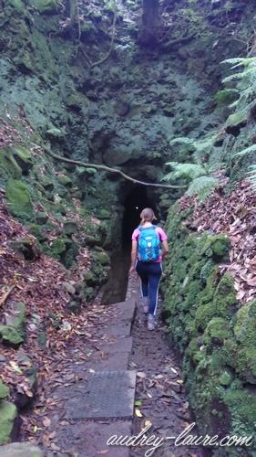 grotte caldeirao verde