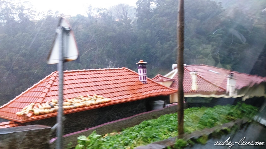 fruits qui sèchent sur les toits
