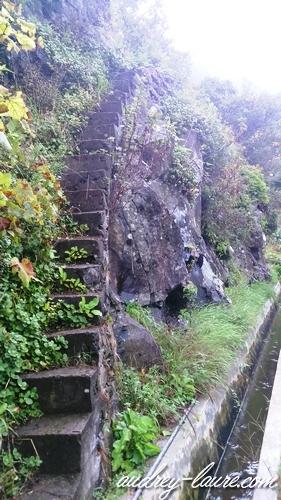 escalier levada voyage madère