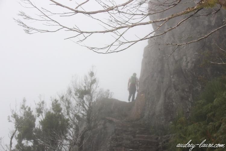 escaliers encumeada randonnée madère