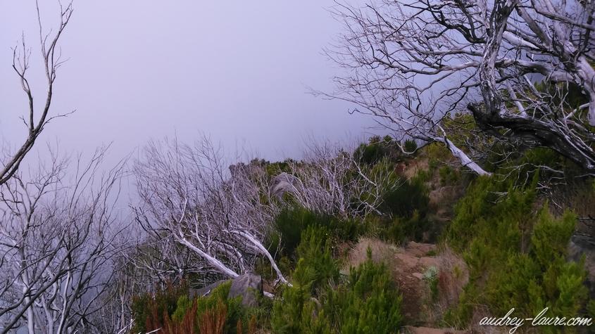 vereda da encumeada paysage lunaire