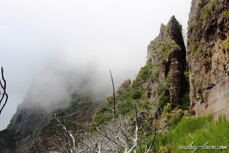 paysage brouillard madère voyage