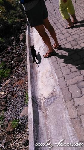 achadas da cruz chats