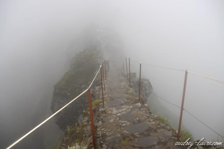 pico do arieiro brouillard