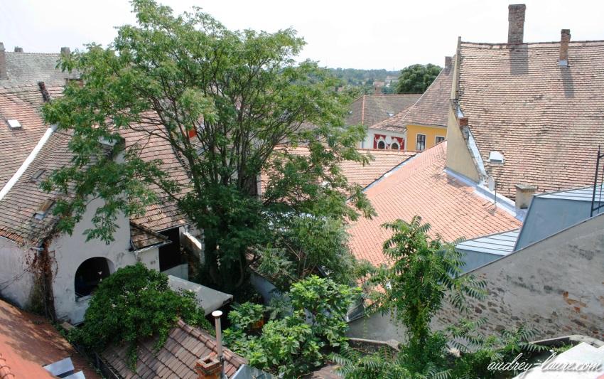 Szentendre colline Hongrie