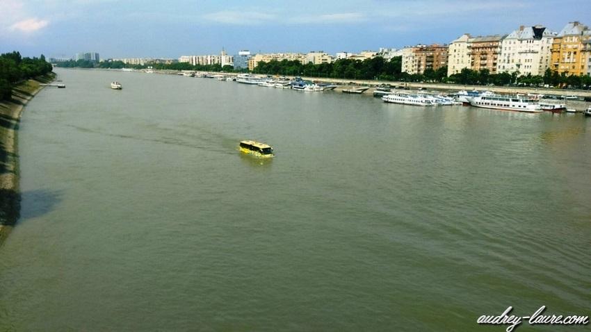 Voyage en Hongrie - Bus flottant dans l'eau