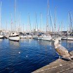 Barcelone, Espagne : Rambla de Mar