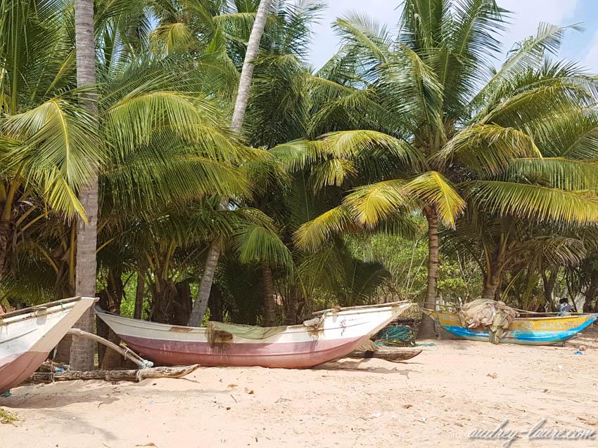 Voyage au Sri Lanka - plage - Tangalle - barques de pêcheurs