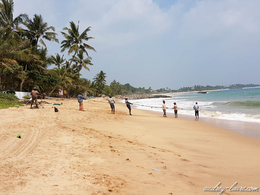 Pêcheurs remontant un filet - Sri Lanka - corde