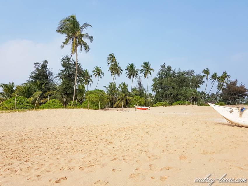 Plage déserte à Tangalle - Sud du Sri Lanka  les plus belles plages du Sri Lanka