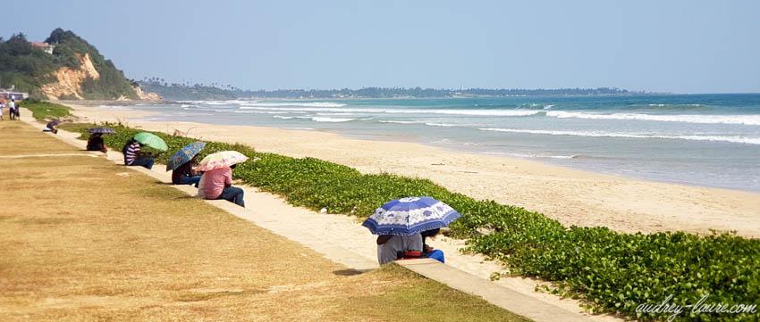 Couples sous des parapluies - amoureux - Sri Lanka (Ceylan)
