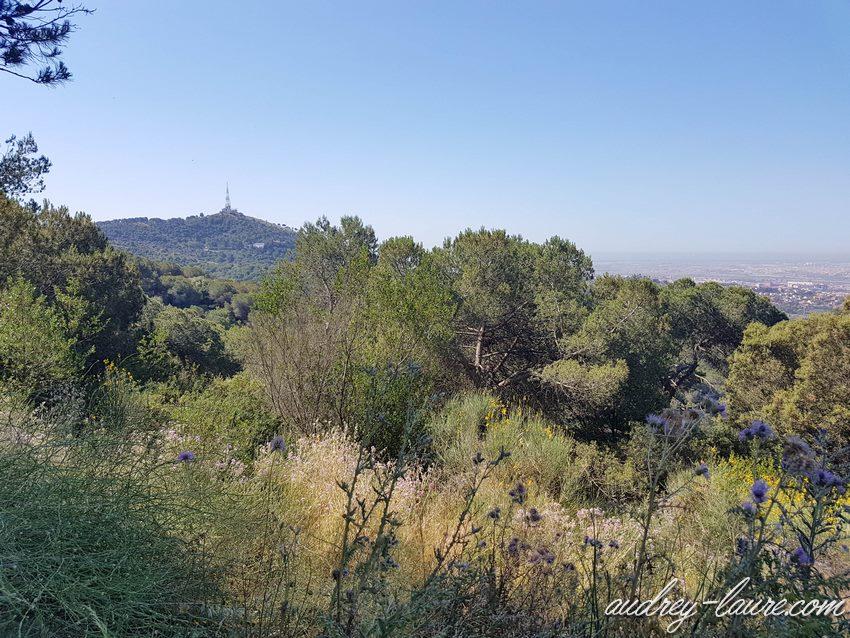 Sortie nature à Barcelone