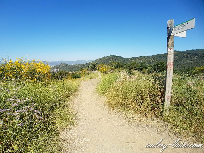 Promenade à Vallvidrera