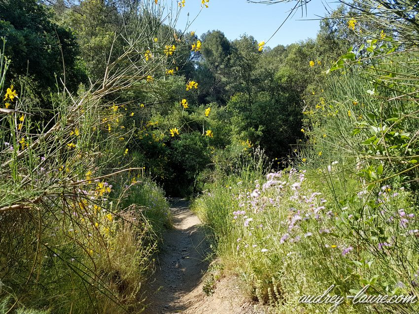 Barcelone : balade dans la nature