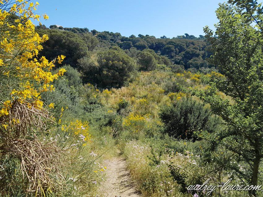 Barcelone : promenade dans la nature