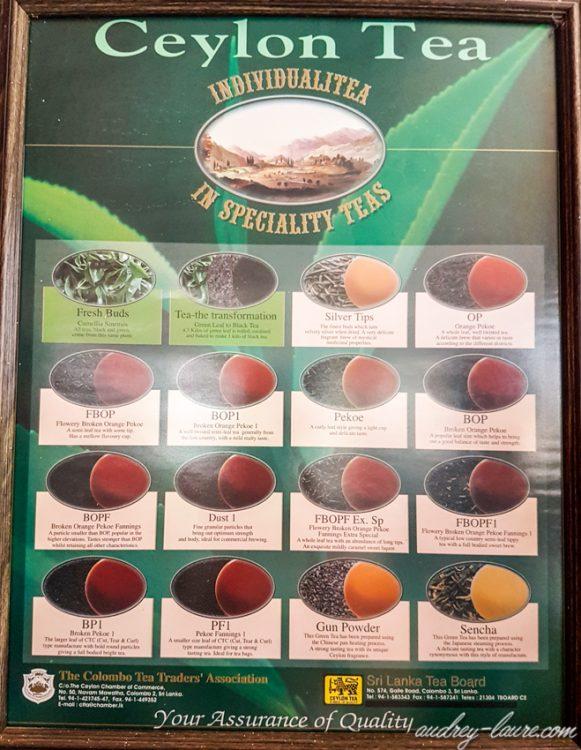 Catégories de thé - Sri Lanka