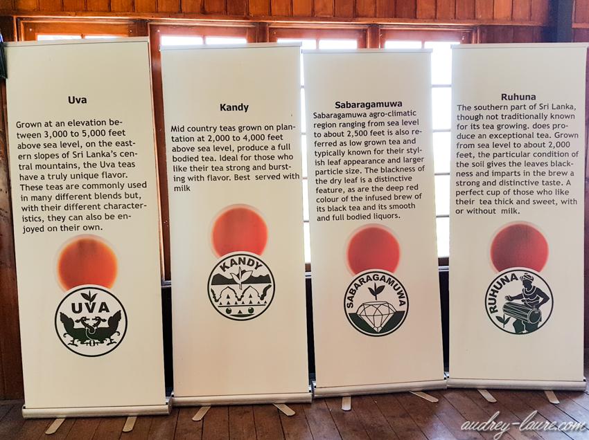 Musée du thé - voyage au Sri Lanka