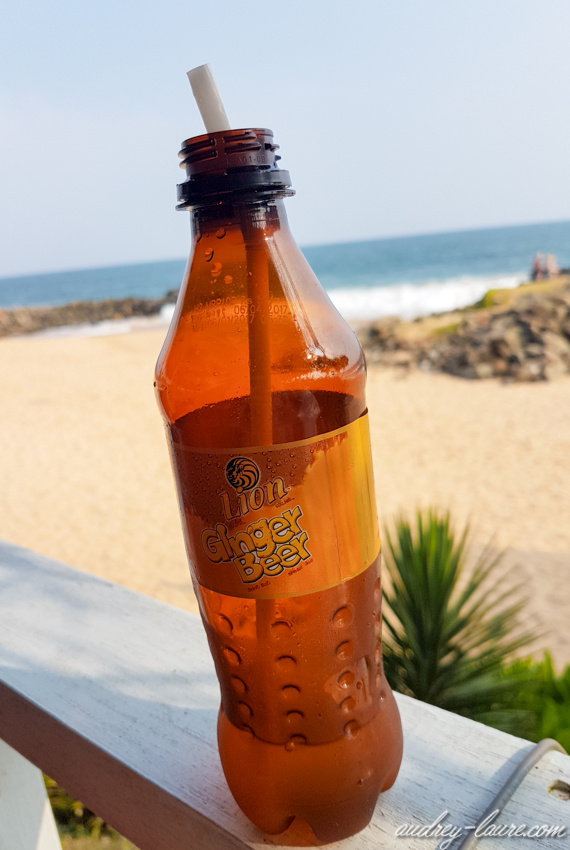 Boissons du Sri Lanka - Ginger Beer - Lion