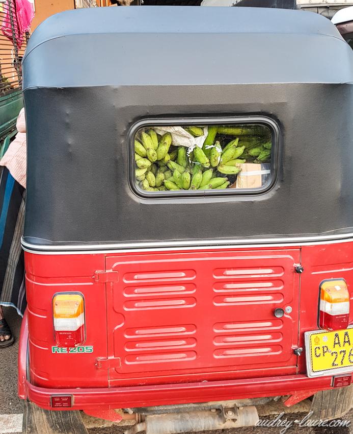 Sri Lanka - Tuk-Tuk chargé de bananes