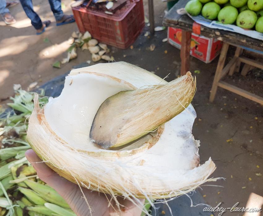 Noix de coco à la cuillère