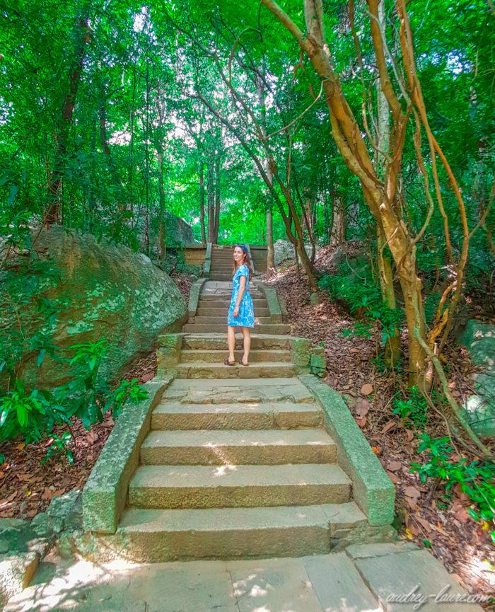 Jungle luxuriante - voyage au Sri Lanka