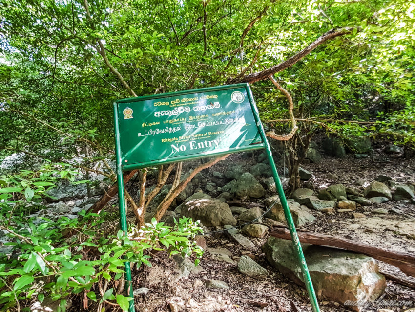 Ritigala - voyage au Sri Lanka