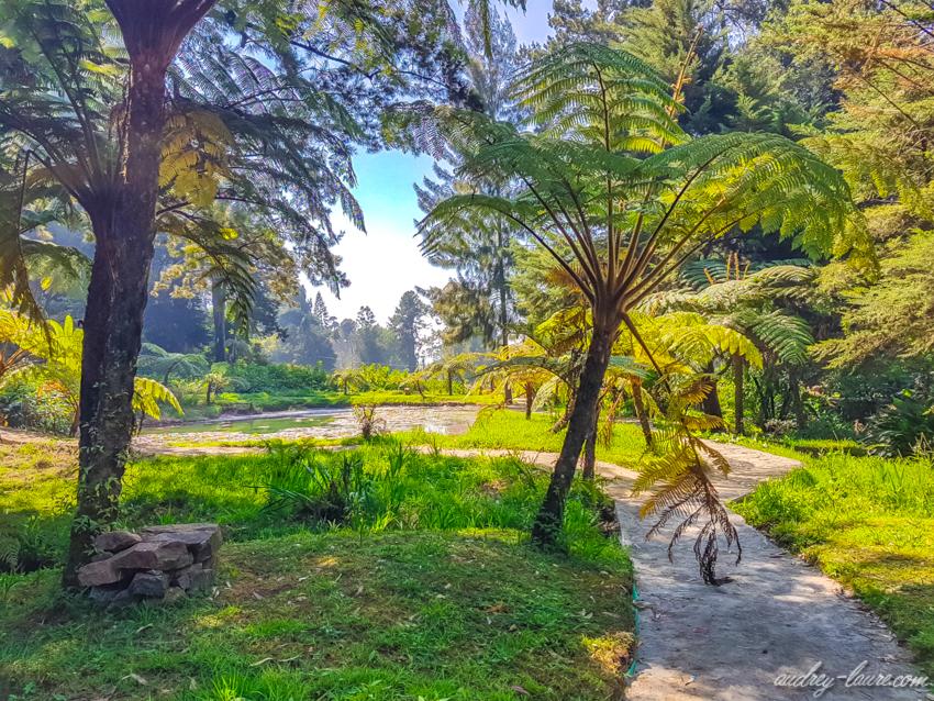 Parc Victoria - Nuwara Eliya - Voyage au Sri Lanka - jardin botanique