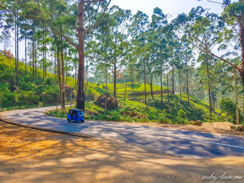 Tuk-tuk sur les routes de montagne du Sri Lanka
