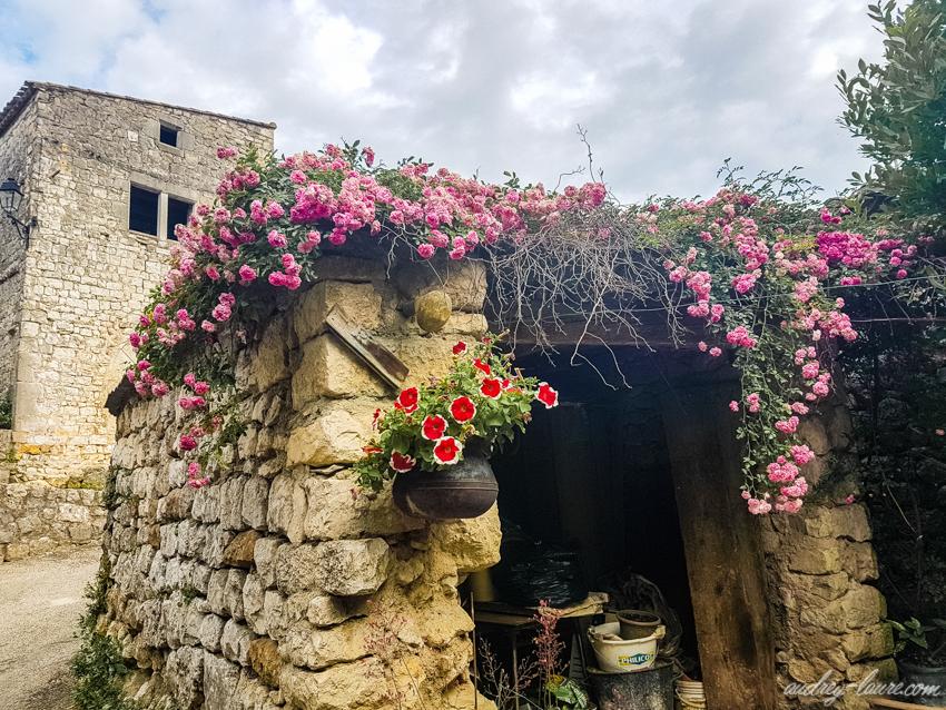 Balazuc - Tourisme en Ardèche - village labellisé - fleurs