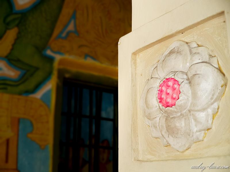 fleur de lotus voyage Sri Lanka : temple bouddhiste d'Aluvihara peintures fresques grottes