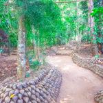 L'ayurvéda au Sri Lanka