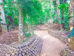 visite-jardin-ayurédique-Sri-Lanka-