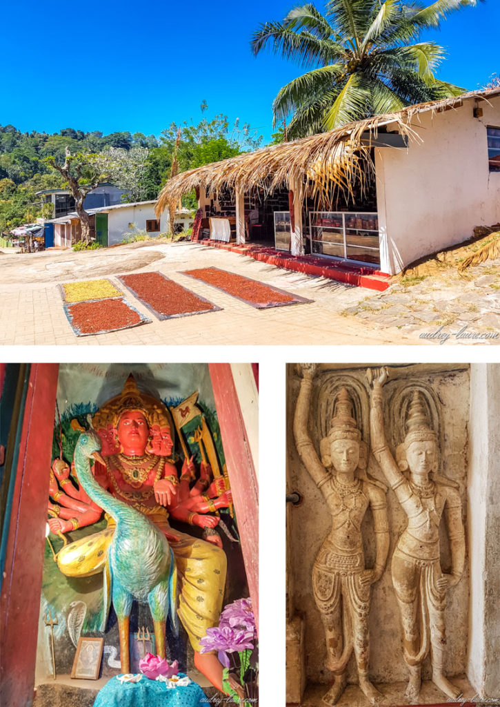 Blog-voyage-Sri-Lanka-Lankathilaka-temple-bouddhiste-fleurs-de-lotus-visite-photo
